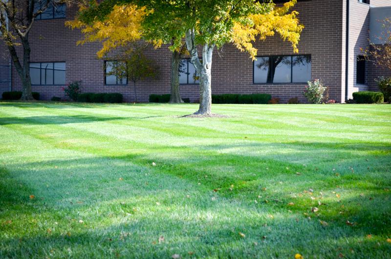 lawn-care kc